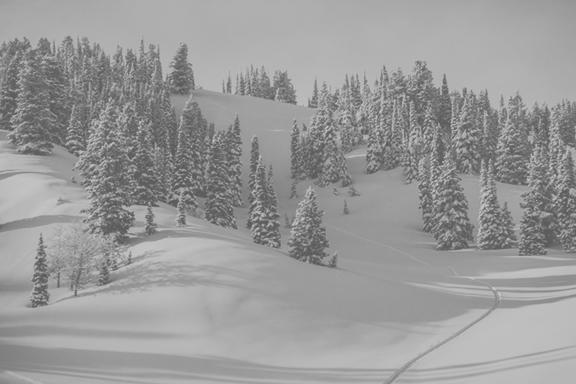 500+ - INCHES OF ANNUAL SNOWFALL