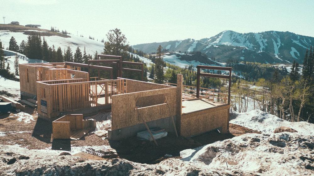 Bertoldi Architects & Blue Willow Builders /Photo: Marshall Birnbaum