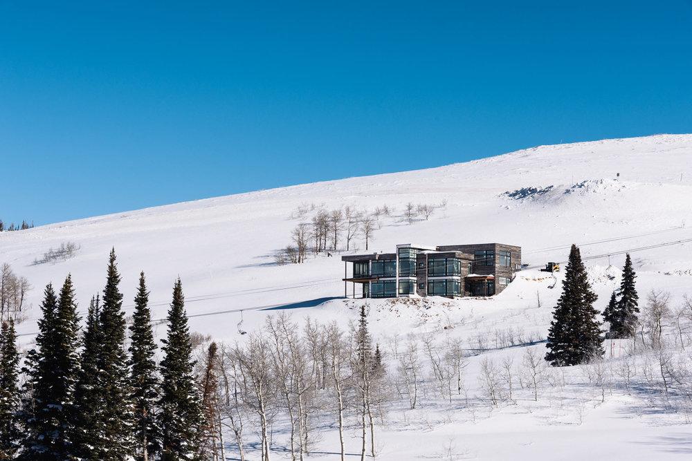 Bertoldi Architects & Blue Willow Builders / Photo: Paul Bundy