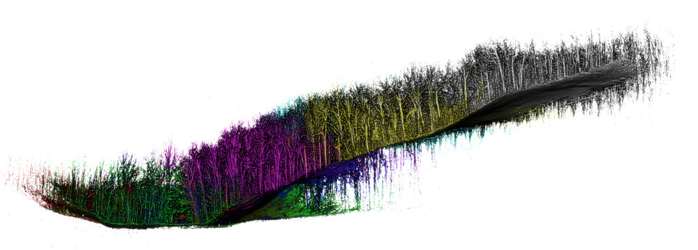 CASE STUDY  : Densely wooded area scanned with  Stencil  only with terrestrial scan that provided full coverage using a back and forth path with multiple use. Matched accurately against a dozen surveyed stakes in deep woods. Model can be cropped to provide precise tree location and diameters. Topography can also be seen by cropping to terrain.