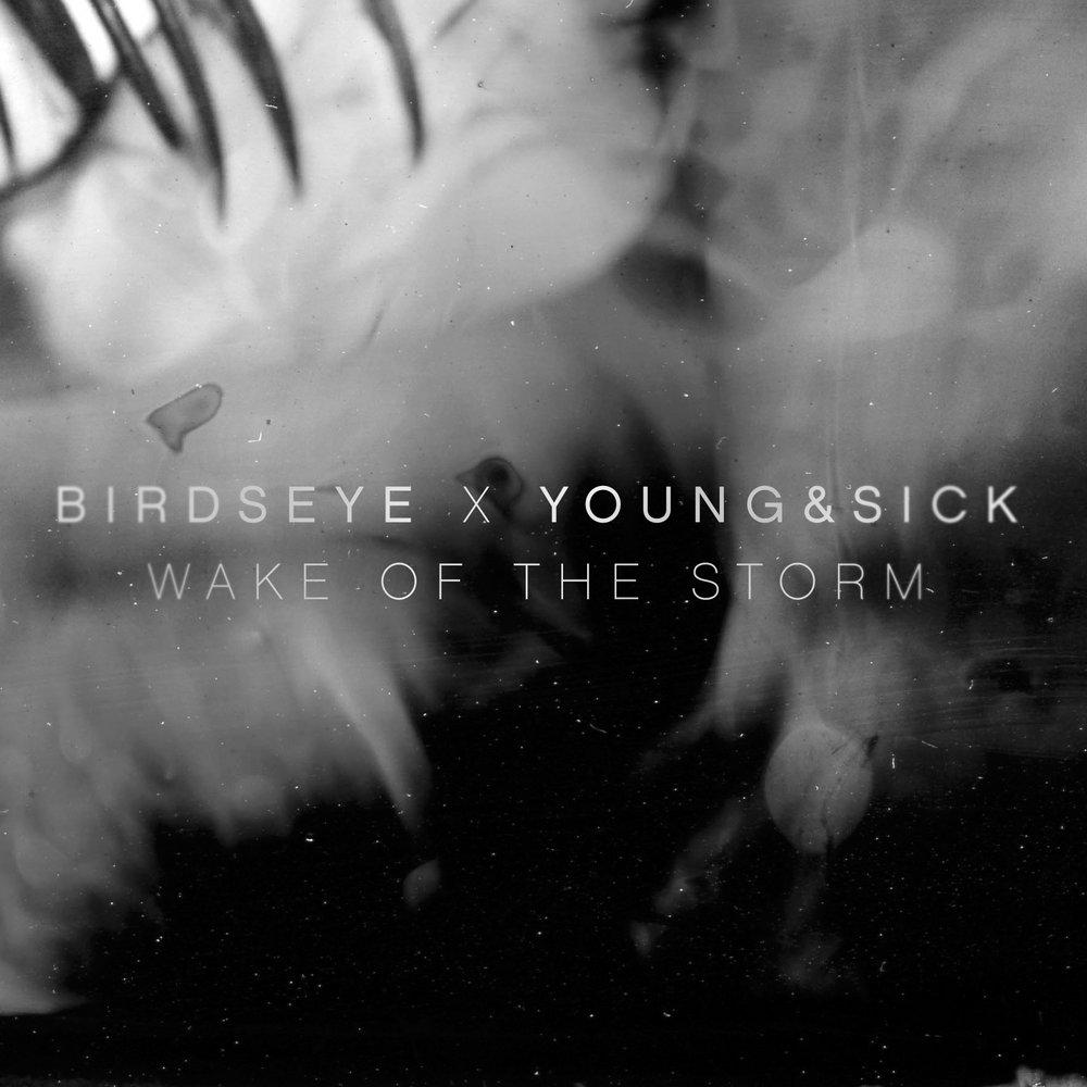 YOUNGSICK X BIRDSEYE.jpg