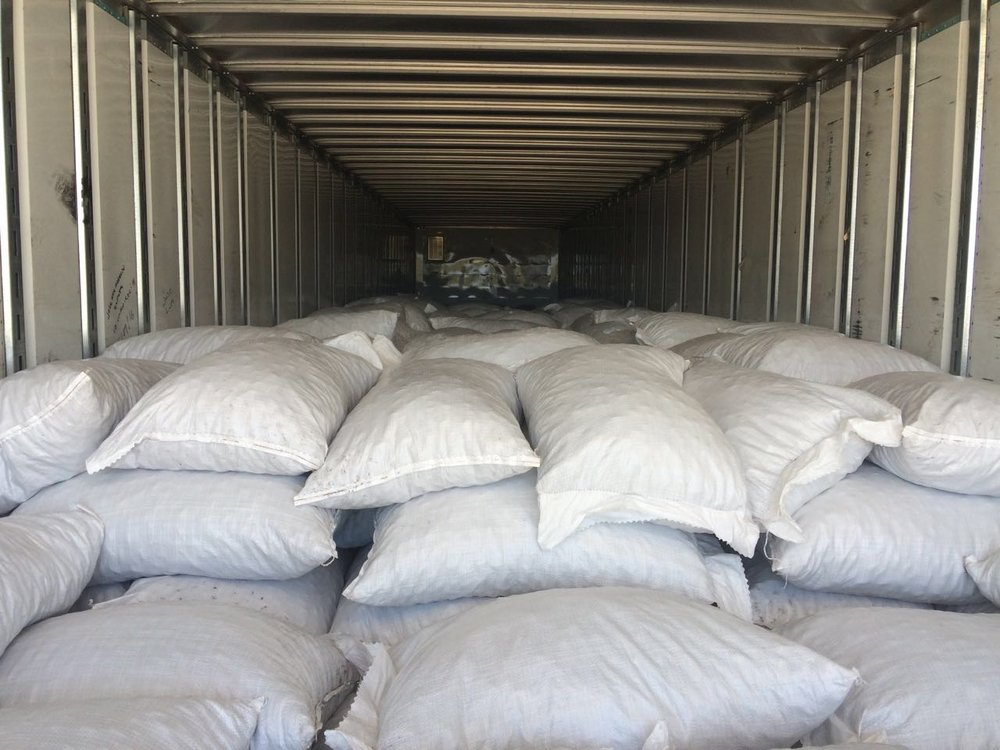 Pecans bagged and loaded for export shipment