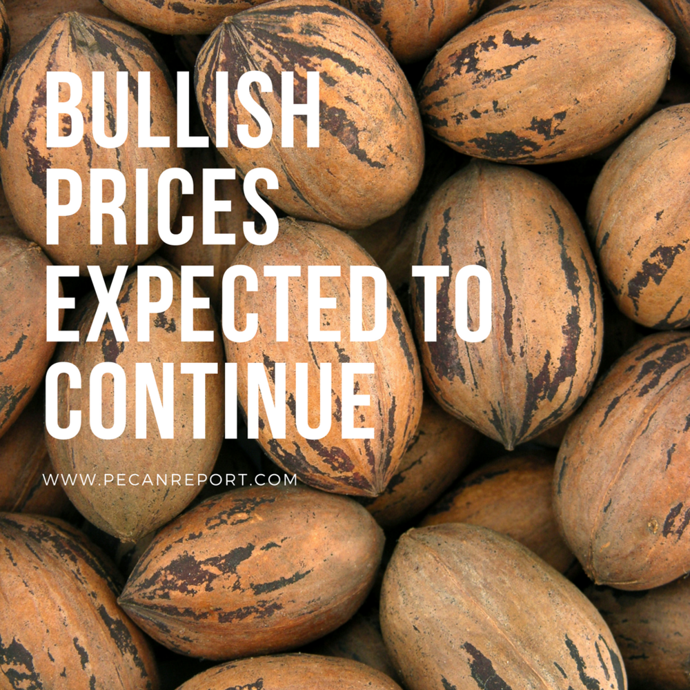 Pecan prices