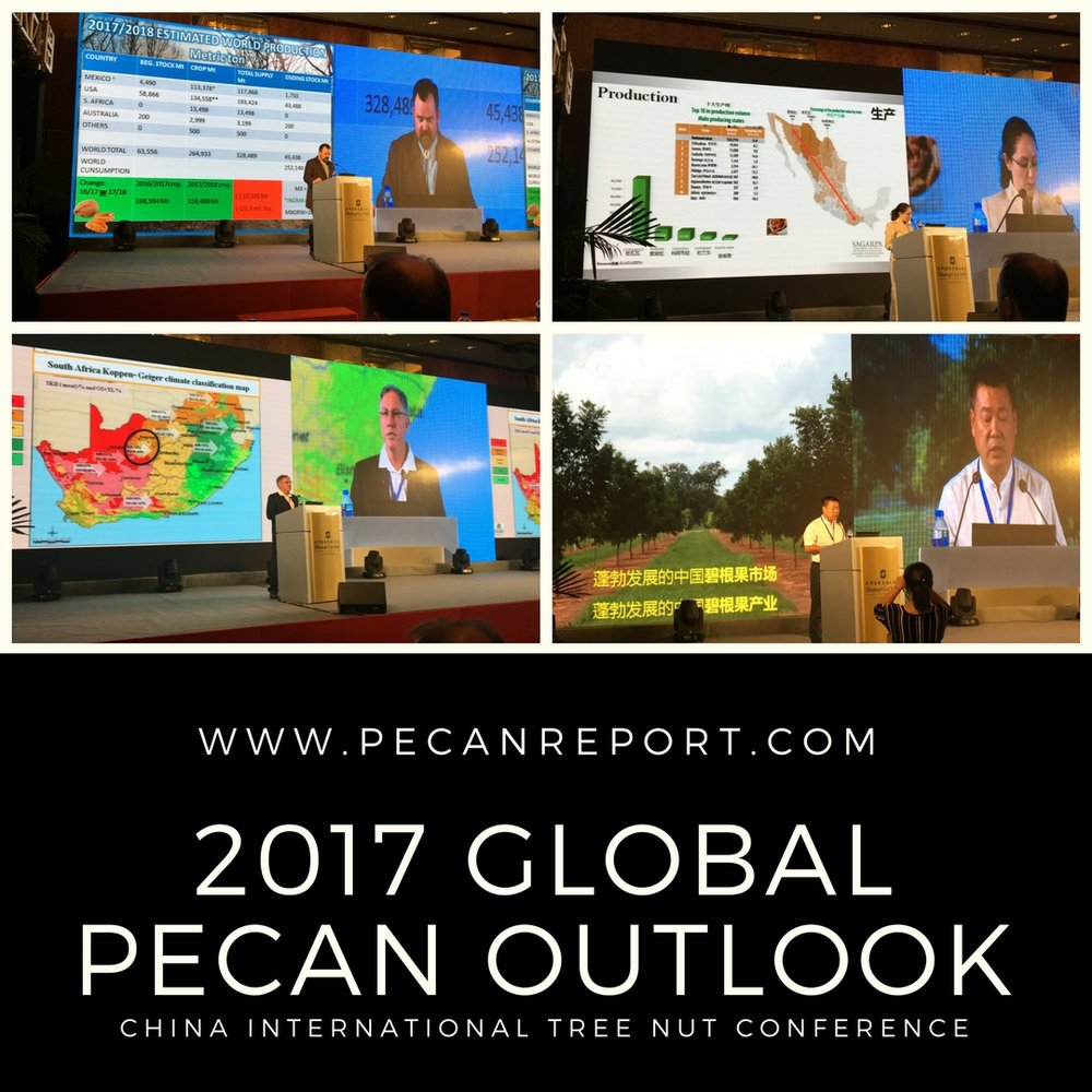 2017 World Pecan Outlook