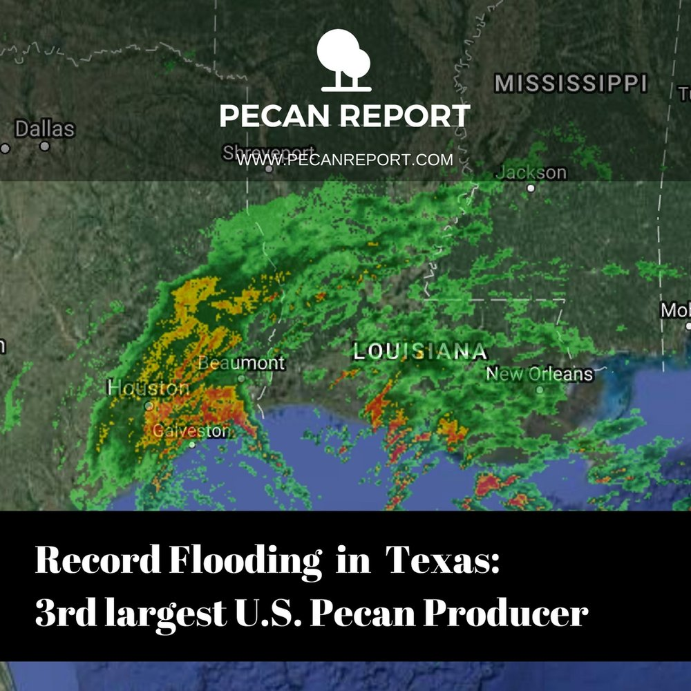 Record Flooding (1).jpg