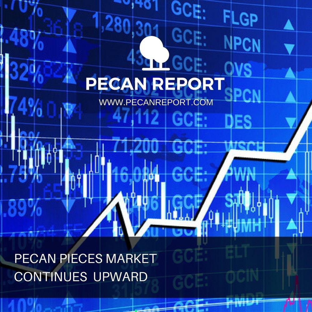 pecan nut prices