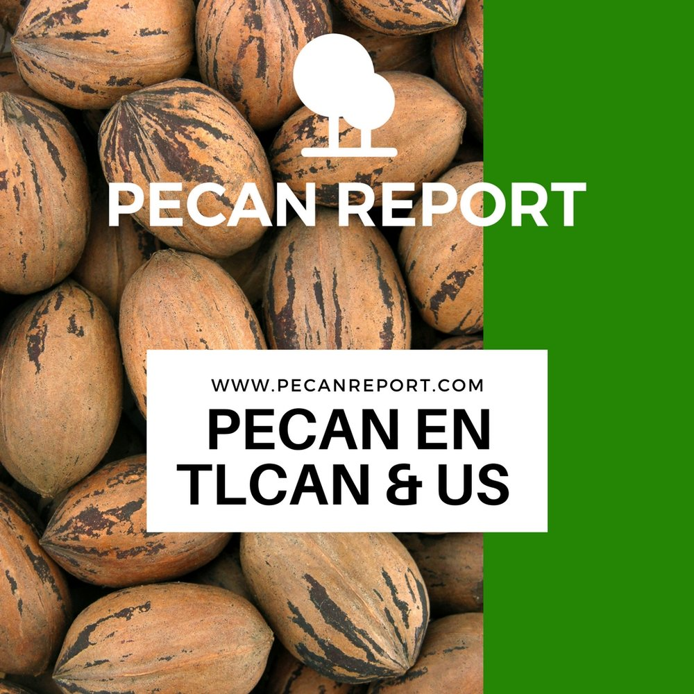 NAFTA - Pecan en TLCAN & US.jpg