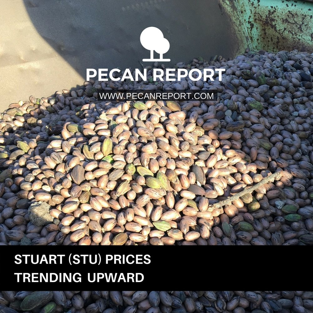 STUART PECAN PRICES.jpg