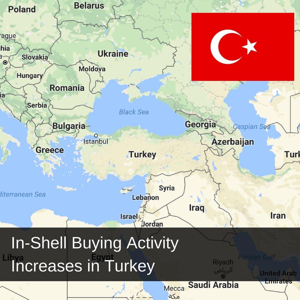 In-Shell Pecan Nuts In Turkey.jpg