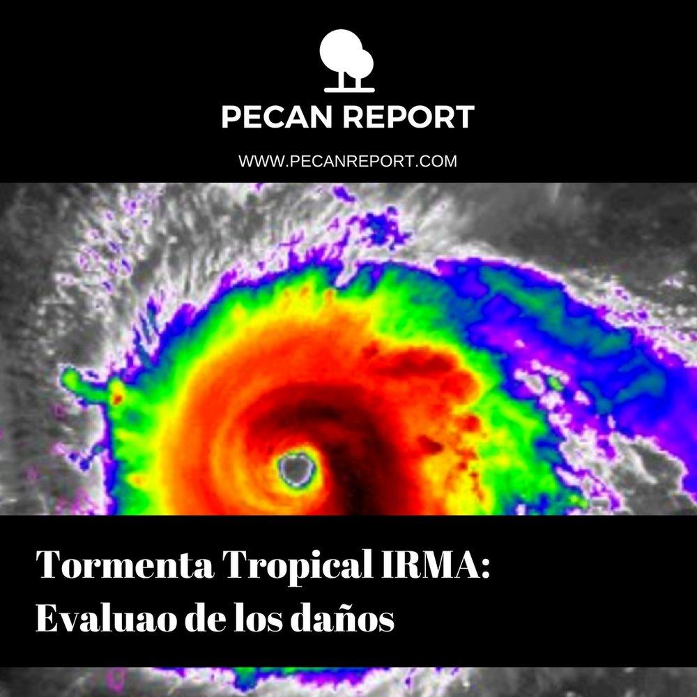 Tormenta Tropical IRMA- Evaluao de los daños.jpg