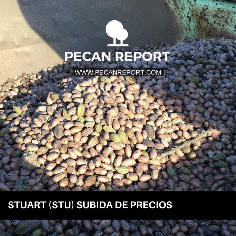 STUART (STU) Subida de Precios.jpg