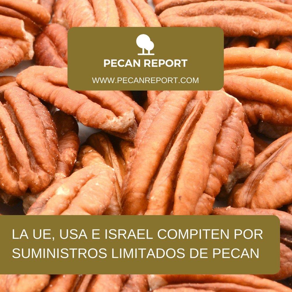 LA UE, USA E ISRAEL COMPITEN POR SUMINISTROS LIMITADOS DE PECAN.jpg