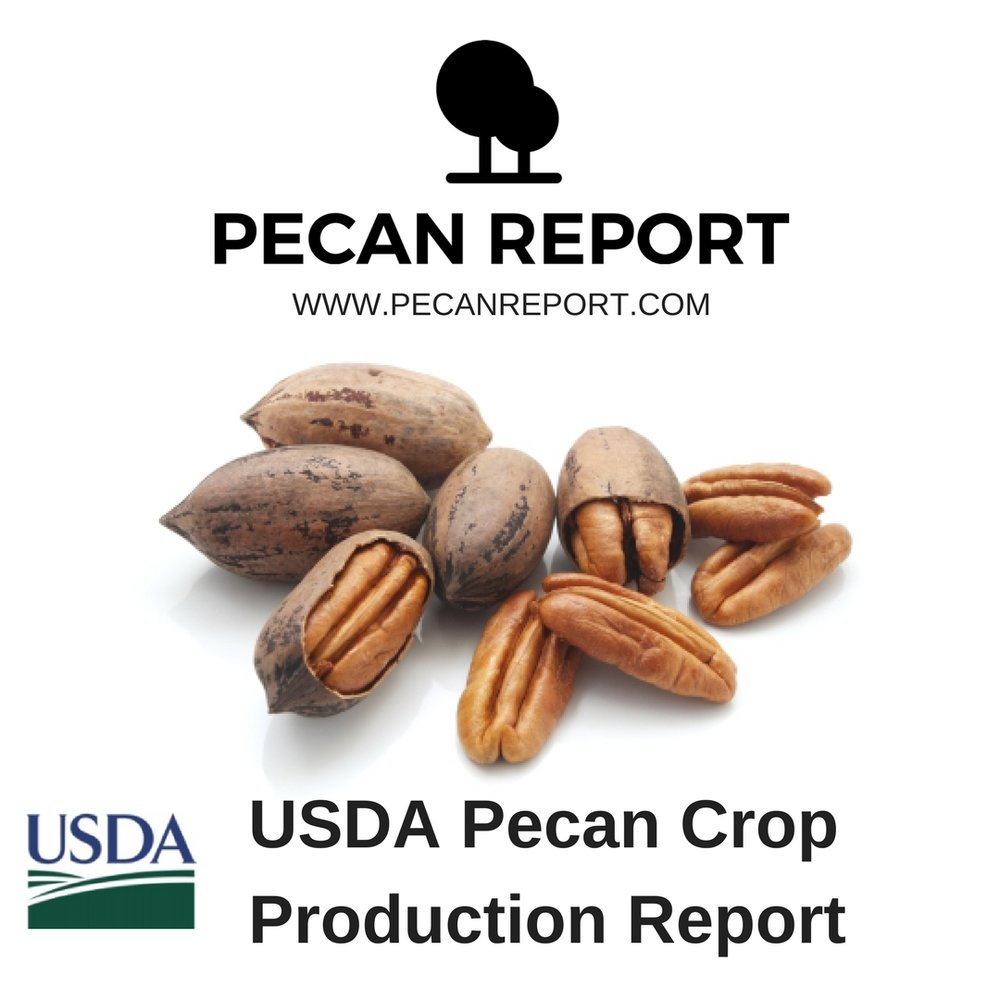 USDA Pecan Crop Production Report .jpg