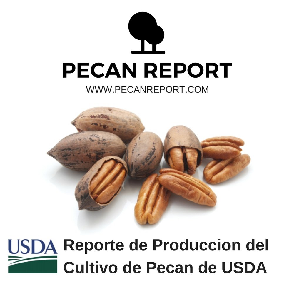 Reporte de Produccion del Cultivo de Pecan de USDA (NASS).jpg