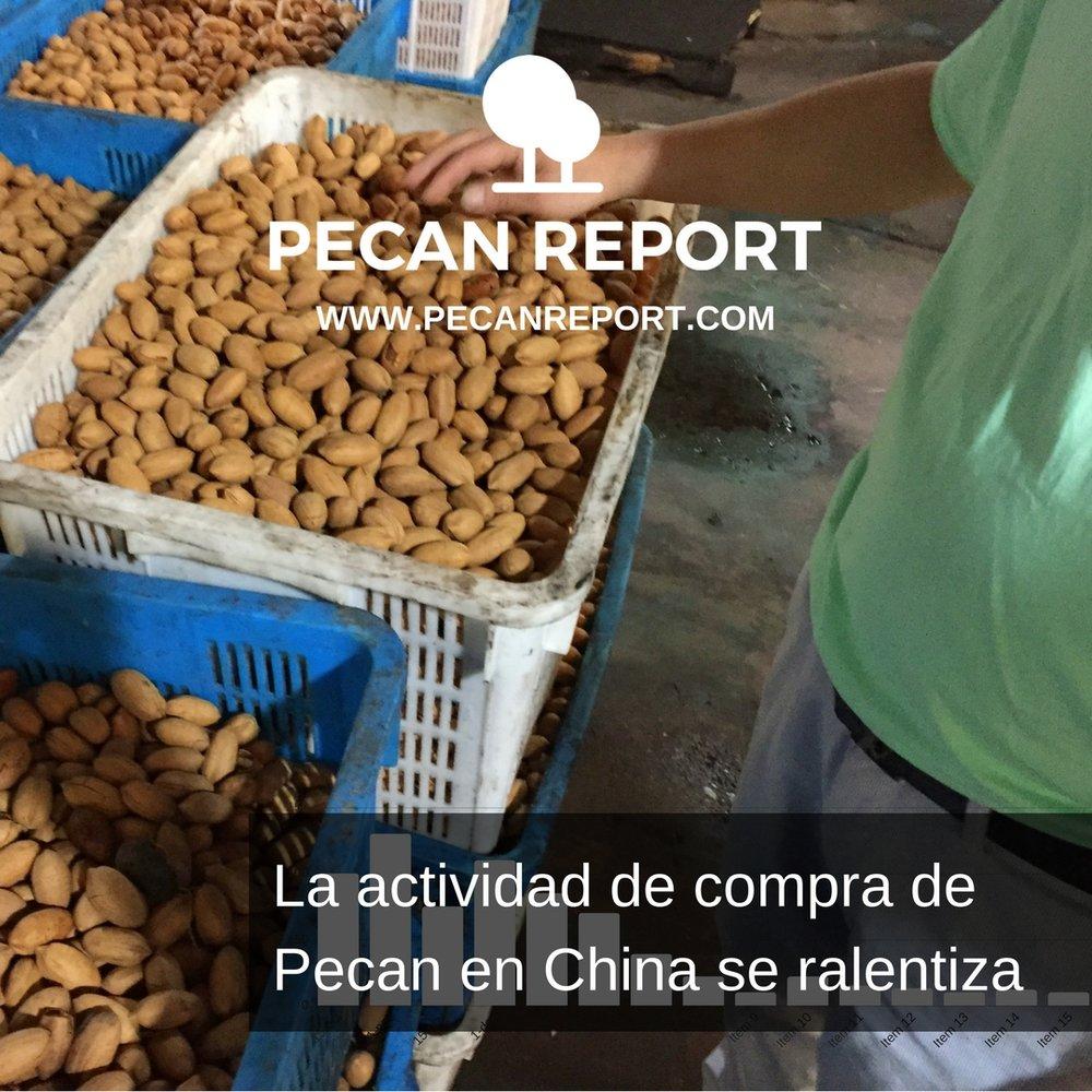 La actividad de compra de Pecan en China se ralentiza.jpg