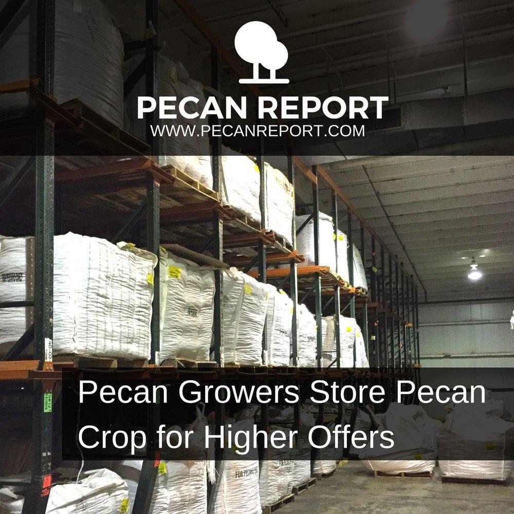 Pecan Growers Store Pecan Crop for Higher Offers.jpg