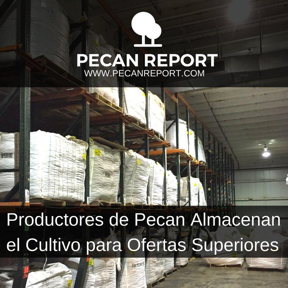 Productores de Pecan Almacenan el Cultivo para Ofertas Superiores.jpg
