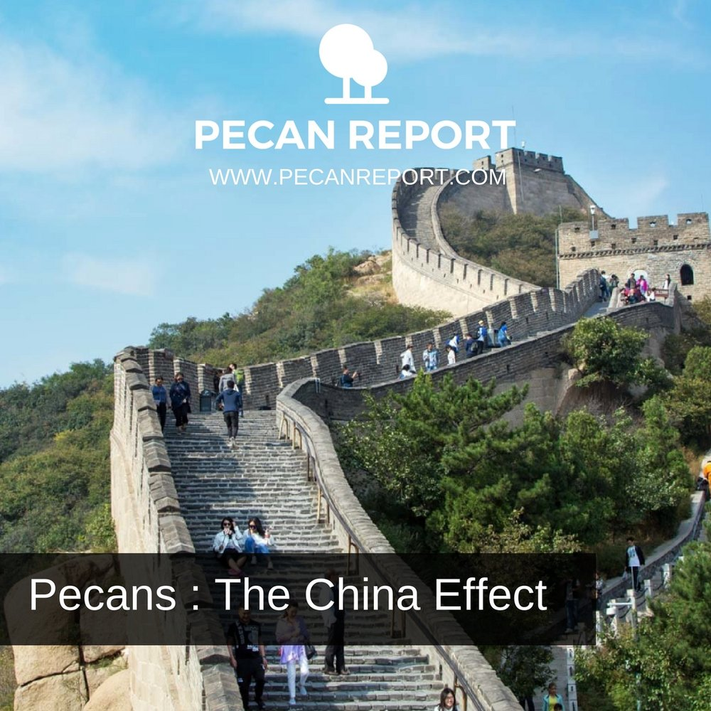 Pecans _ The China Effect.jpg