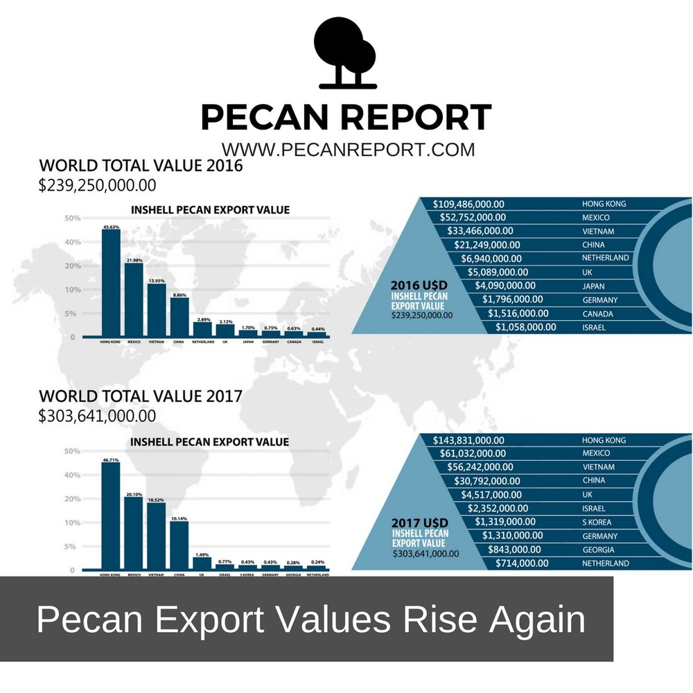 Pecan Export Values Rise Again.jpg
