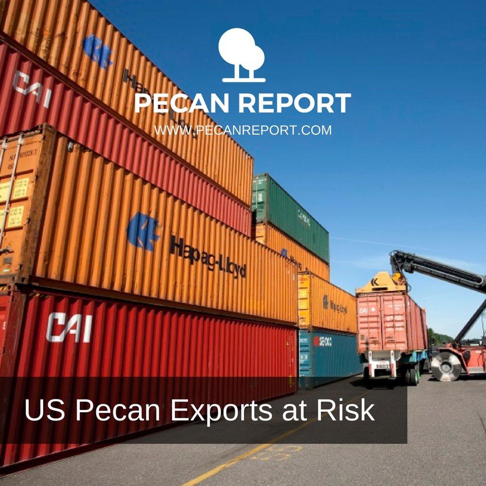 US Pecan Exports to China at Risk.jpg
