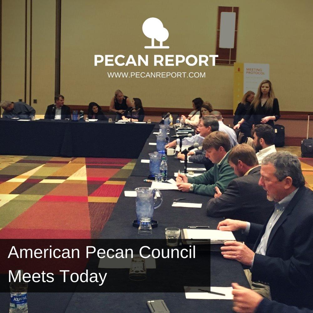 American Pecan Council Meets Today.jpg