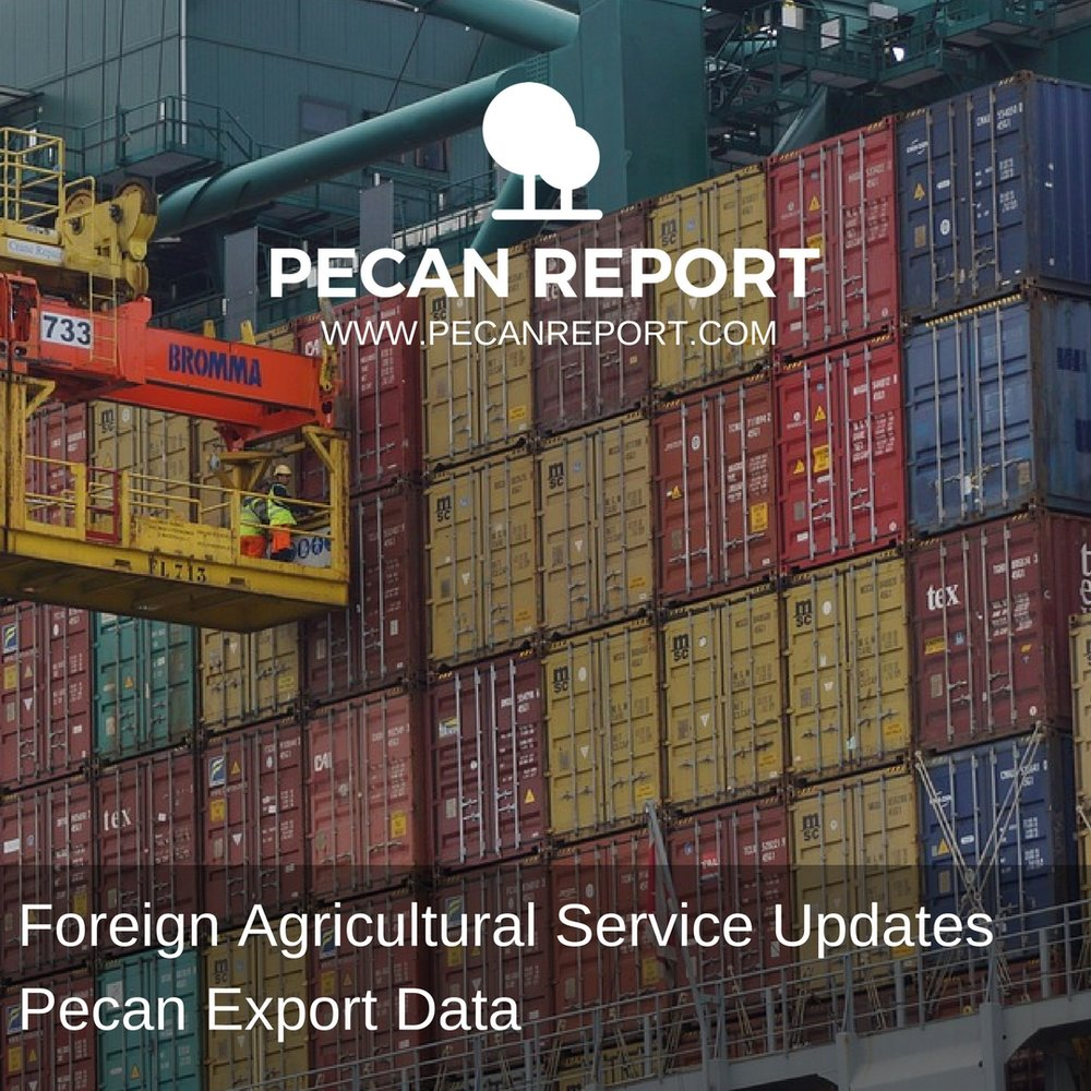 Foreign Agricultural Service Updates Pecan Export Data.jpg