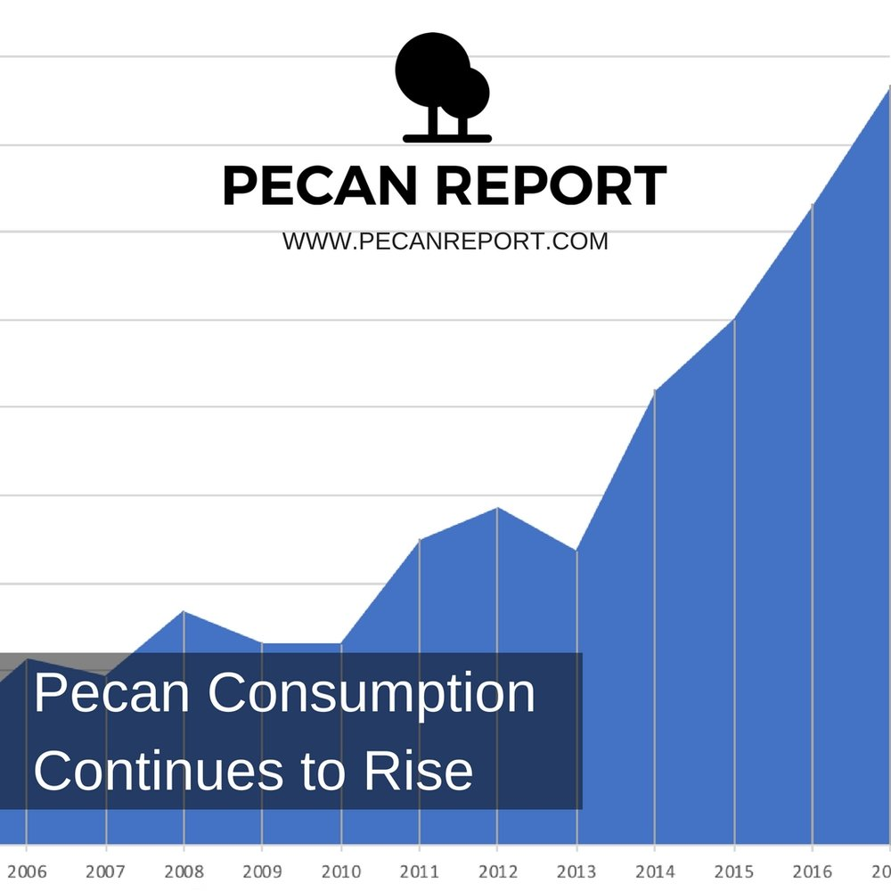 Pecan Consumption Continues to Rise.jpg