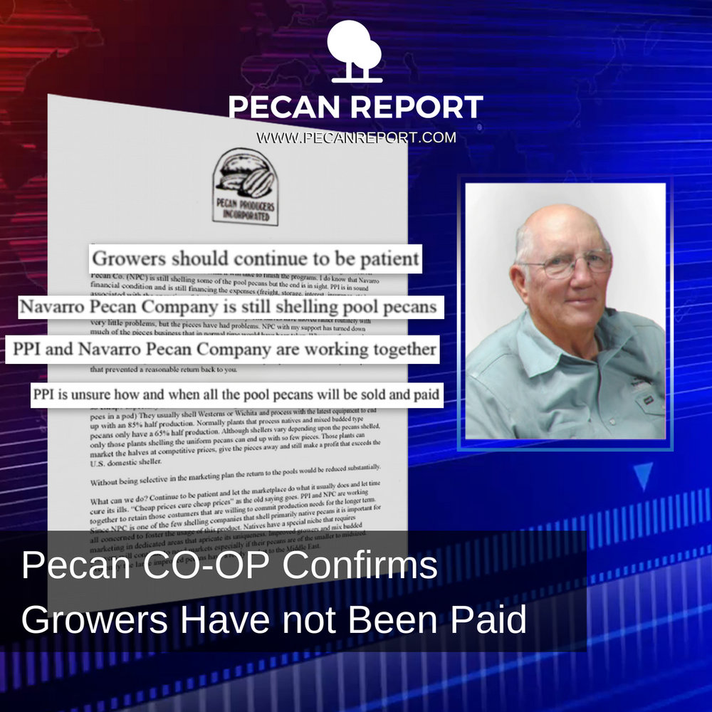 Pecan CO-OP Confirms Growers Have not Been Paid.jpg