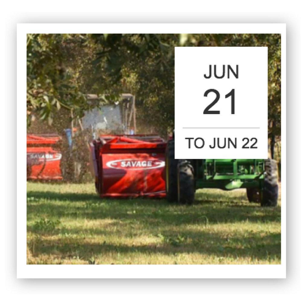 Tri-State Pecan Growers Association.jpg