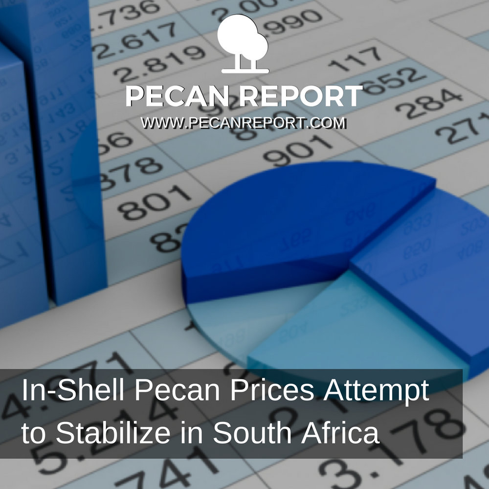 In-Shell Pecan Prices Attempt to Stabilize in South Africa.jpg