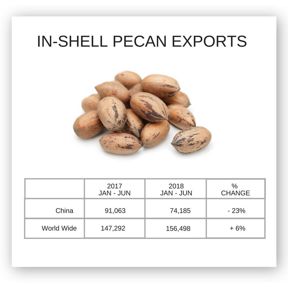 IN-SHELL PECAN EXPORTS CHINA WORLDWIDE.jpg