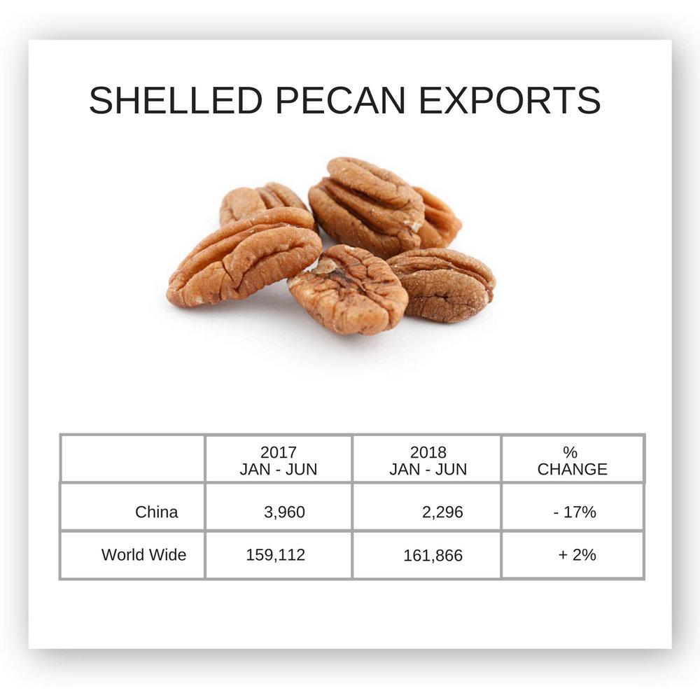 SHELLED PECAN EXPORTS CHINA WORLDWIDE.jpg