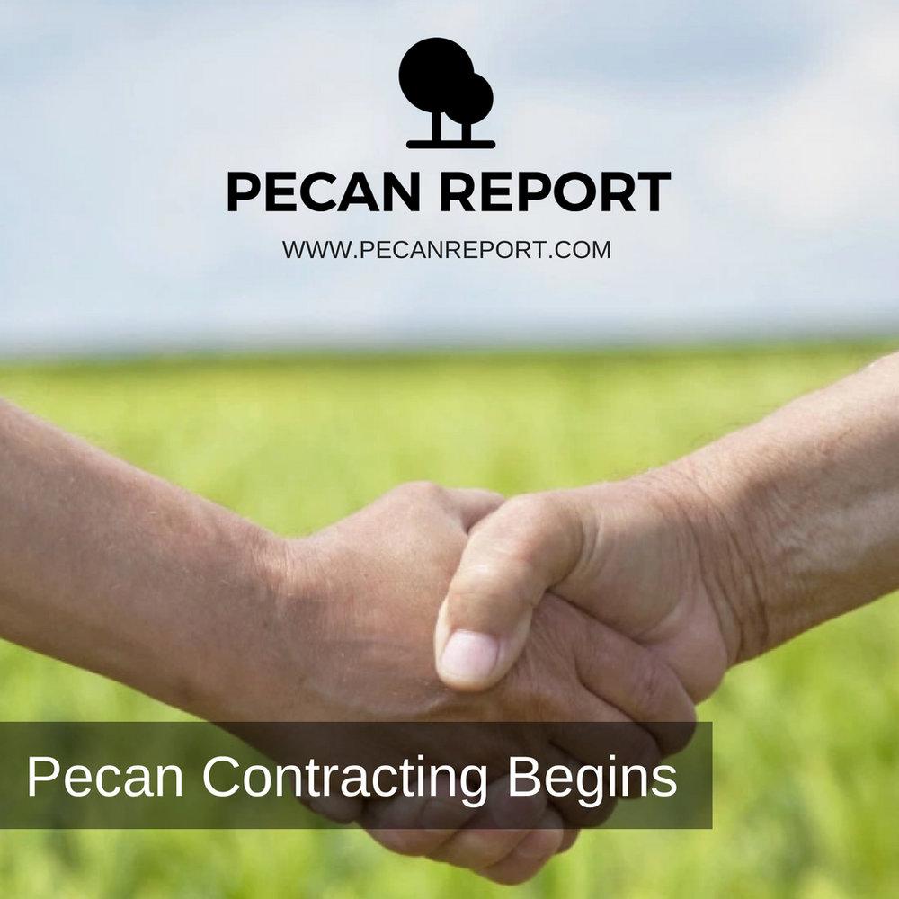 Pecan Contracting Begins.jpg