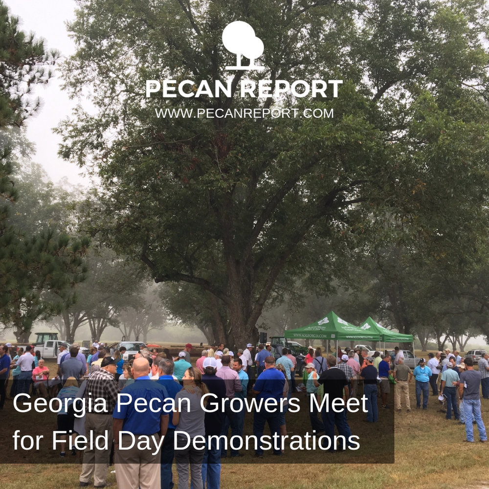 Georgia Pecan Growers Meet for Field Day Demonstrations.jpg