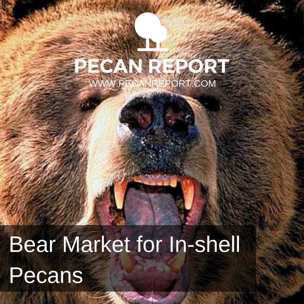 Bear In-shell Pecan Market.jpg