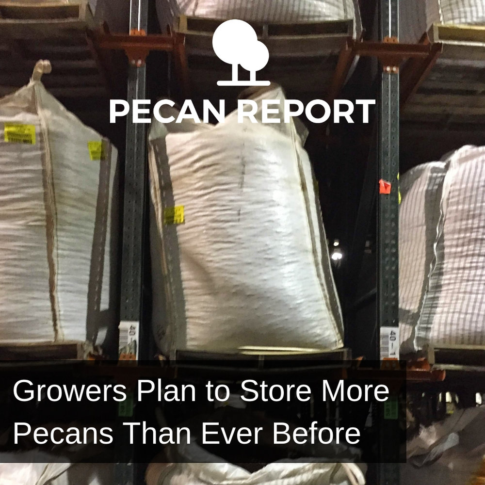 Growers Plan to Store More Pecans than Ever Before.jpg