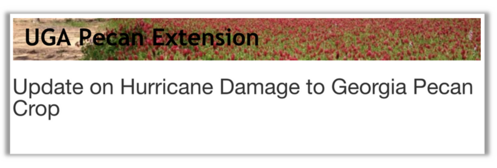 UGA Pecan Damage Estimate Hurricane Micheal