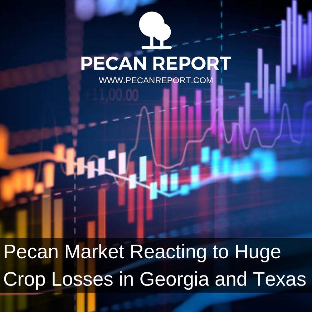 Pecan Market Reacting to Huge Crop Losses in Georgia and Texas.jpg