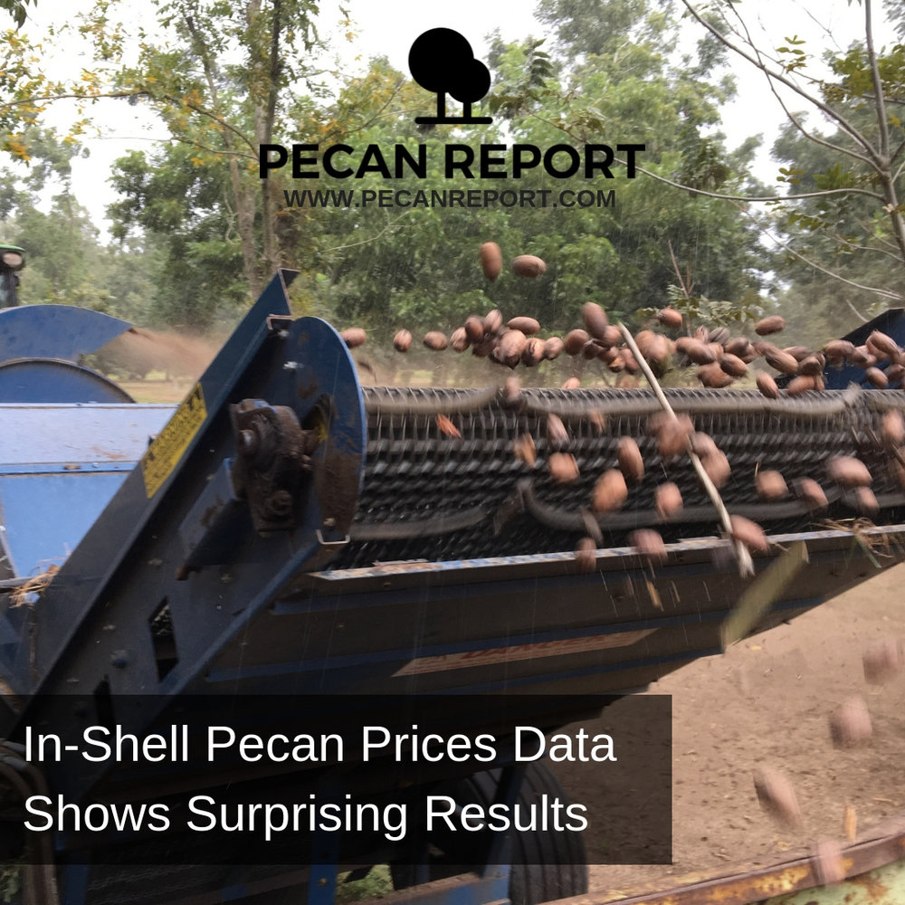 In-Shell Pecan Prices Data Shows Surprising Results.jpg