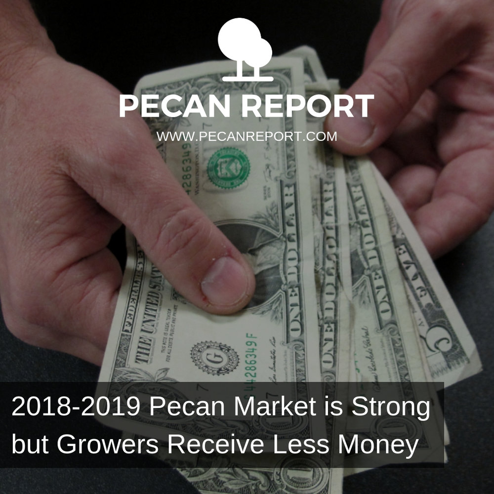 2018-2019 Pecan Market is Strong but Growers Receive Less Money.jpg