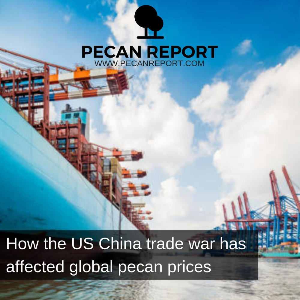 How the US China trade war has affected global pecan prices.jpg