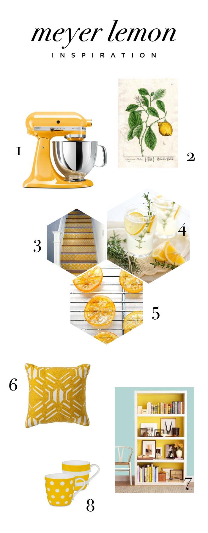 Meyer-Lemon-Inspiration