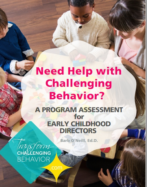 challenging-behavoior-directors-assessment.jpg