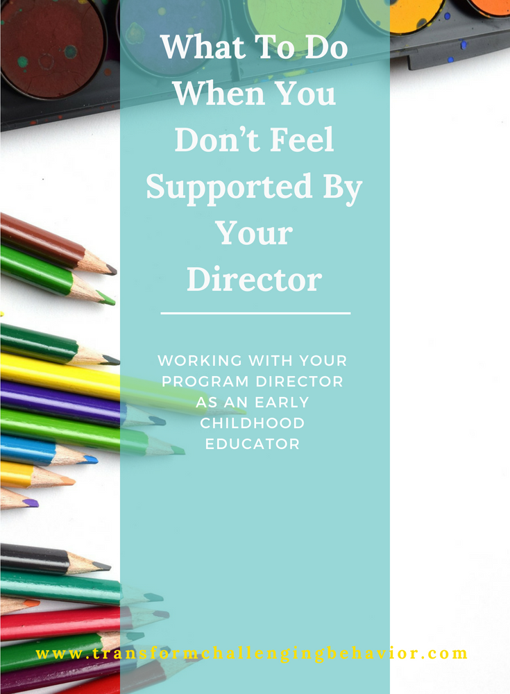 Early Chilld Educator - What do do when you aren't supported by your director