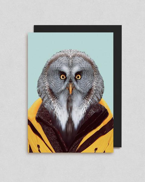 owl-card.jpg