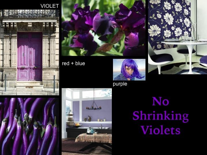 Sherwin-Williams CEU – No Shrinking Violets