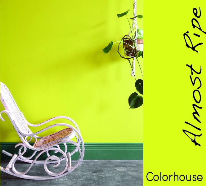 colorhouse-07.jpg