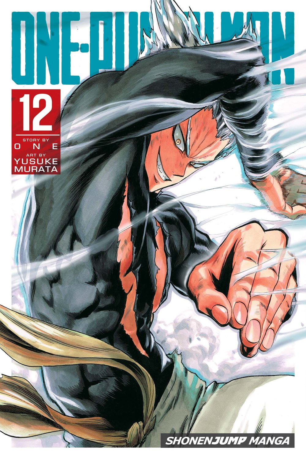 One-Punch Man vol. 12.jpg