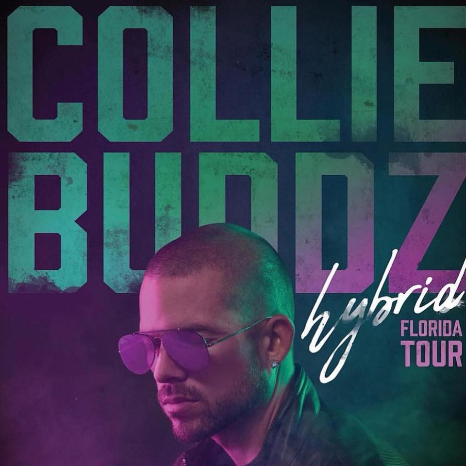 Image result for Collie Buddz - Hybrid