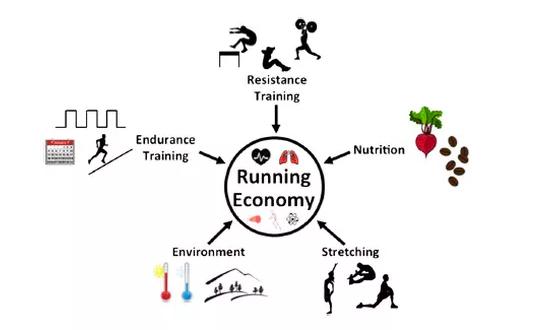 Factors effecting running economy [4]